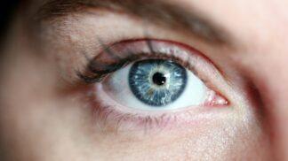 Dnes slavíme Světový den zraku. Zrakovou vadou trpí například i Mark Zuckerberg!