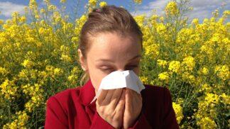 Slzí vám oči? Možná trpíte alergií stejně jako každý třetí Čech # Thumbnail