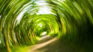 Proč se nám dělá při jízdě autem špatně a jak se této nevolnosti nejlépe bránit?