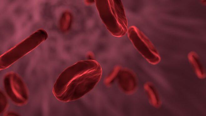 6 zajímavostí o krvi