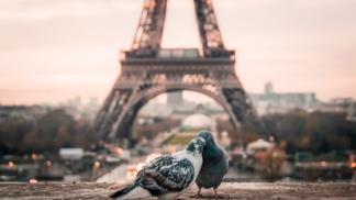 Do Paříže za neopakovatelnou atmosférou. Město zamilovaných vás pohltí