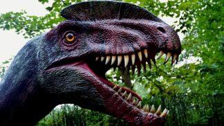 Je v dnešní vyspělé době možné oživit dinosaury? Vypadá to, že ne. Jurský park je tedy jen nesplnitelným snem