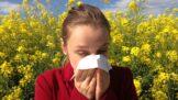 Všudypřítomný pyl je v těchto dnech pohromou pro alergiky. Patříte mezi ně i vy? Pojďte se podívat, jak se s alergií vypořádat