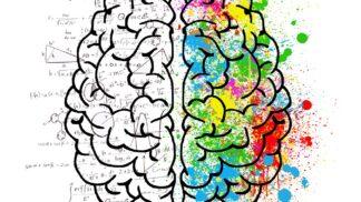 Lidský mozek není až tak nudný, jak se na první pohled zdá. Toto jste o něm možná netušili