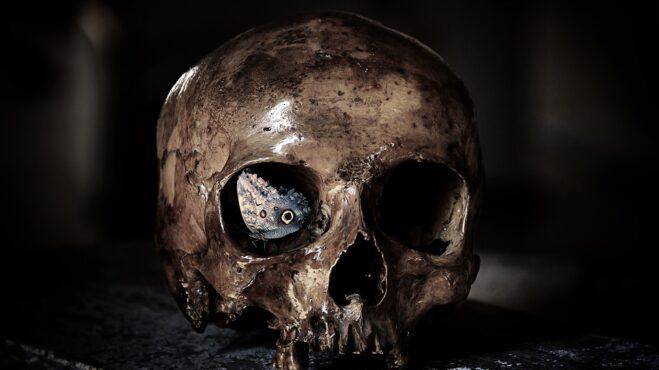 Co pronesly slavné osobnosti o smrti? Zde jsou ty nejkrásnější a zároveň nejpochmurnější citáty o smrti