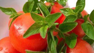 Děti kečup zbožňují: Vyrobte jim doma vlastní z čerstvých rajčat # Thumbnail