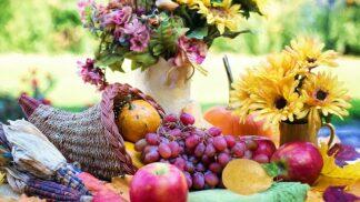Jakými plody vás překvapí babí léto na zahradě? Nejsou to jen jablka a hrušky # Thumbnail