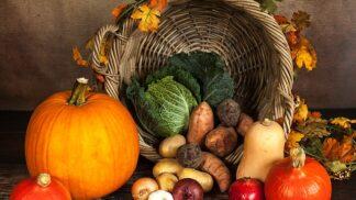 Dýňové dobroty: Jak využít královnu podzimu v kuchyni i jako dekoraci