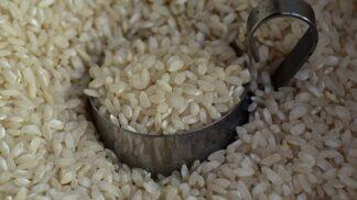 Basmati, jasmínová, dlouhozrnná: Správně uvařit rýži je docela kumšt