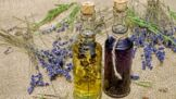 Thumbnail # Nevíte, co s časem? Udělejte si bylinkovou lékárničku. Třezalka zklidní nervy, levandule pomůže nespavcům