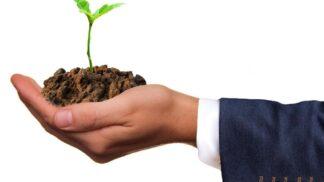 Už žádná lhostejnost k životnímu prostředí: Firmy učí své zaměstnance být uvědomělými