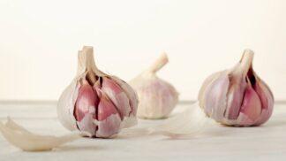 Do ledničky ne: Jak skladovat česnek, aby vydržel co nejdéle?
