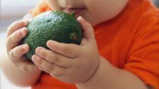 Jídlo nesmí obtěžovat: Jak přimět malého strávníka, aby začal jíst