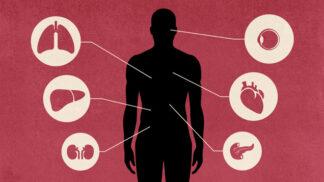 Jak detoxikovat orgány, abyste nebyli nemocní ani unavení?