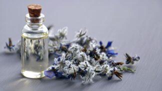 Kouzlo aromaterapie: Jaké oleje si pořídit do bytu pro podzimní pohodu?