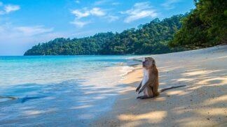 Bezpečná dovolená: Cestování do exotiky beze strachu