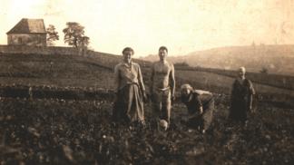 Botanická zahrada slaví 50 let: Jak šel čas s pražskou oázou klidu?