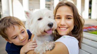 Dítě, které má doma zvířátko, je méně alergické. Naznačuje to severský výzkum