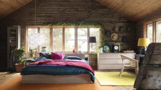 Bez dřeva si domov snad nedokážeme představit! Jaké 4 odolné druhy si pouštíme k tělu nejraději?