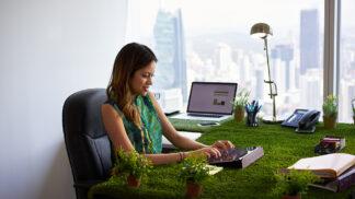 Rostliny zvyšují pracovní výkonnost až o 15 procent