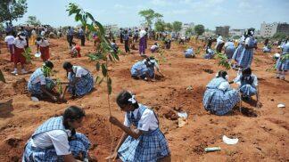 800 tisíc dobrovolníků, 50 milionů stromů, 1 den. Indie si brousí zuby na čistší vzduch i světový rekord