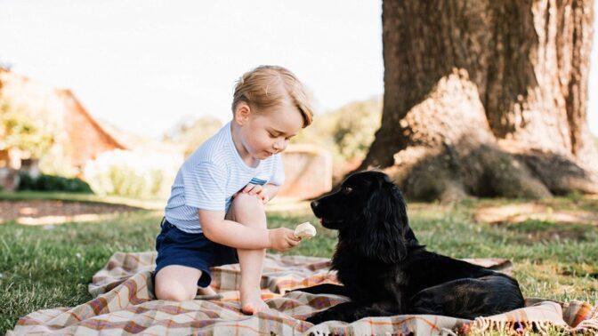 Princ George oslavil své 3. narozeniny s kamarády, rodinným psem a rodiči Kate