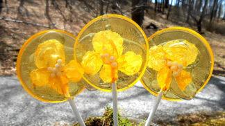 Tato průsvitná lízátka s jedlými květy jsou to nejkrásnější, co jsme dnes na internetu viděli
