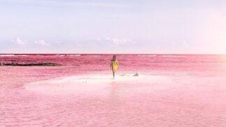 Laguna s růžovou vodou dobývá Instagram