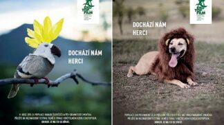 Dochází nám herci! Festival Ekotopfilm upozorňuje na hubení zvířat