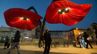 V Jeruzalémě rozkvétají vlčí máky před očima. Poskytují světlo i stín