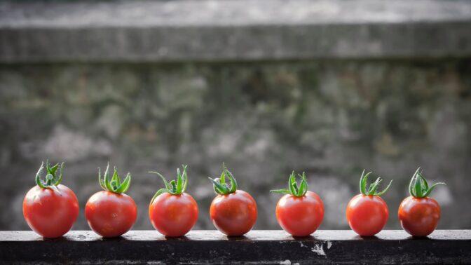 Recept pro zdraví: Dejte si každý den kousek zeleniny, co je možná ovoce