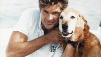 Hvězda Pobřežní hlídky David Hasselhoff: Chutnají mu Horalky, sójový suk ho moc nenadchl