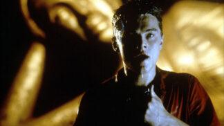 Pláž s Leonardem DiCapriem: Film měl být o kráse nedotčené zátoky, přispěl ale k její devastaci