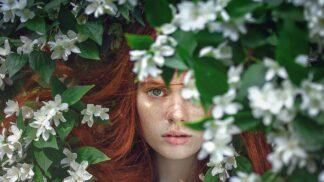 Bylinkové balzámy pro krásné vlasy: Vypadávání zpomalí bazalka, heřmánek zesvětluje