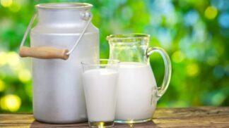 Zdroj vápníku: Na mléko zapomeňte, jezte tyto potraviny