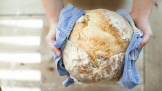 Velký průvodce chlebem: Podle čeho se Češi při jeho koupi rozhodují?
