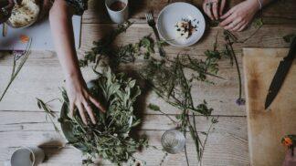 Jdete na podzimní procházku? Nasbírejte si tyto 4 bylinky, které by rozhodně neměly chybět ve vaší domácí lékárně