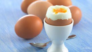 Jak uvařit ta nejlepší vejce na hniličku – záleží i na jejich velikosti