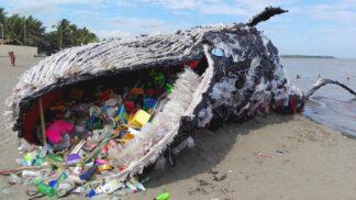 Potraviny bez plastu: Řetězec na Novém Zélandu díky tomu registruje radikální vzrůst prodeje