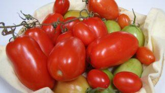 Jak zpracovávat rajčata: Můžete je sušit na slunci i v troubě, nakládat a překvapivě i zamrazovat