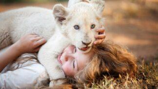 Mia a bílý lev: Jedinečný film pro celou rodinu o nerozlučném kamarádství malé dívky a divoké šelmy