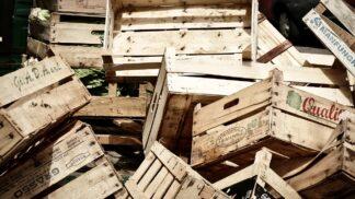 Tesco slaví úspěch: Za dva roky snížilo odpad o polovinu!