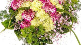 Karafiáty: Květiny, jejichž pověst zničil socialismus, k nám dovezl jeden chytrý voják