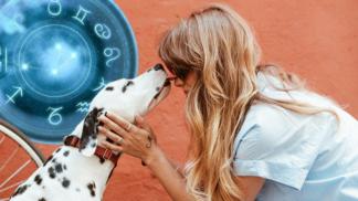 Horoskop domácích mazlíčků: Býk by si měl pořídit kočku, k Panně se hodí králík