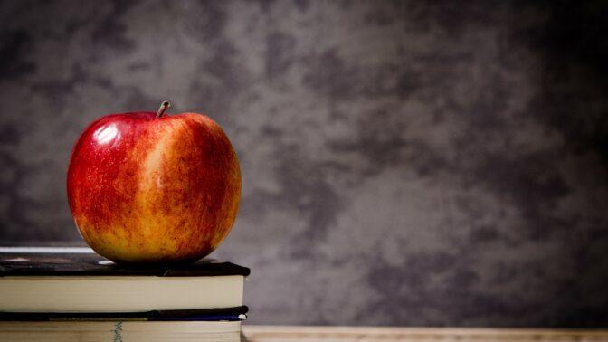 Učitelka vysvětlila dětem nebezpečí šikany. Použila dvě jablka